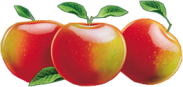 Apples01_dhedey.png